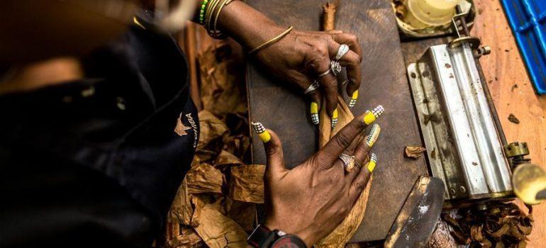 lựa chọn nào cho người mới bắt đầu hút xì gà?